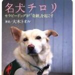 【感動実話】名犬チロリ物語~捨て犬からセラピードッグへ