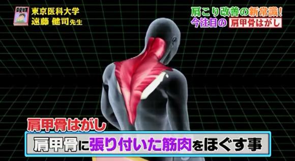 肩甲骨はがし (09)
