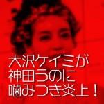 大沢ケイミが神田うのベビーシッター事件に噛み付き炎上!の一部始終まとめ