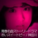 昭和ノスタルジードラマ|赤いスイートピー&神田川 あらすじ・キャスト・人物相関図