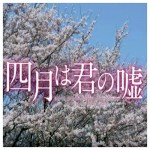 四月は君の嘘 実写版映画 あらすじ・キャスト主題歌鑑賞ガイド