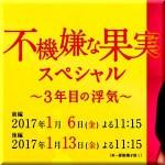 不機嫌な果実スペシャル~3年目の浮気~あらすじ・キャスト・相関図 1月6日前編/1月13日後編